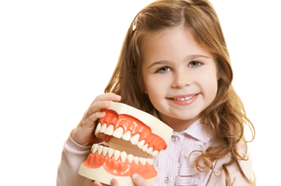 молочные зубы мифы