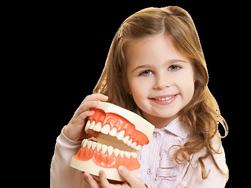 Удаление постоянных зубов
